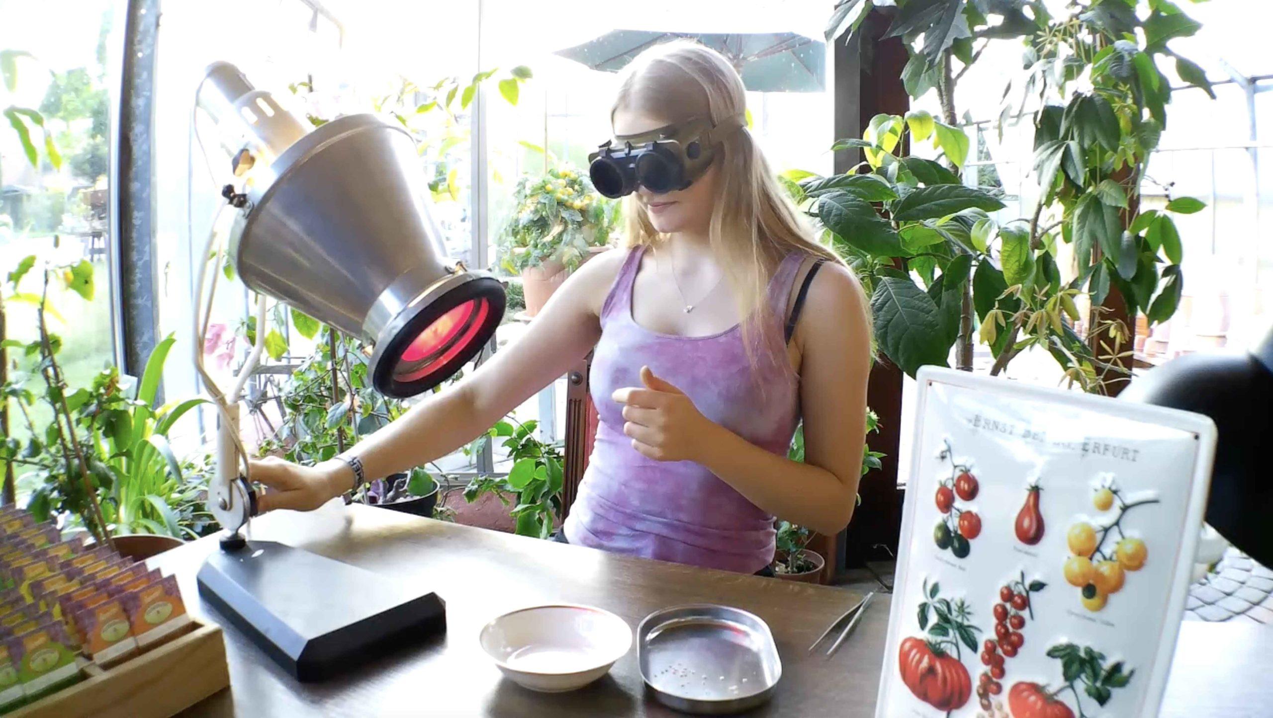 Kleverhof Forschungsabteilung: Tomate direkt aus Saatkorn herstellen ツ