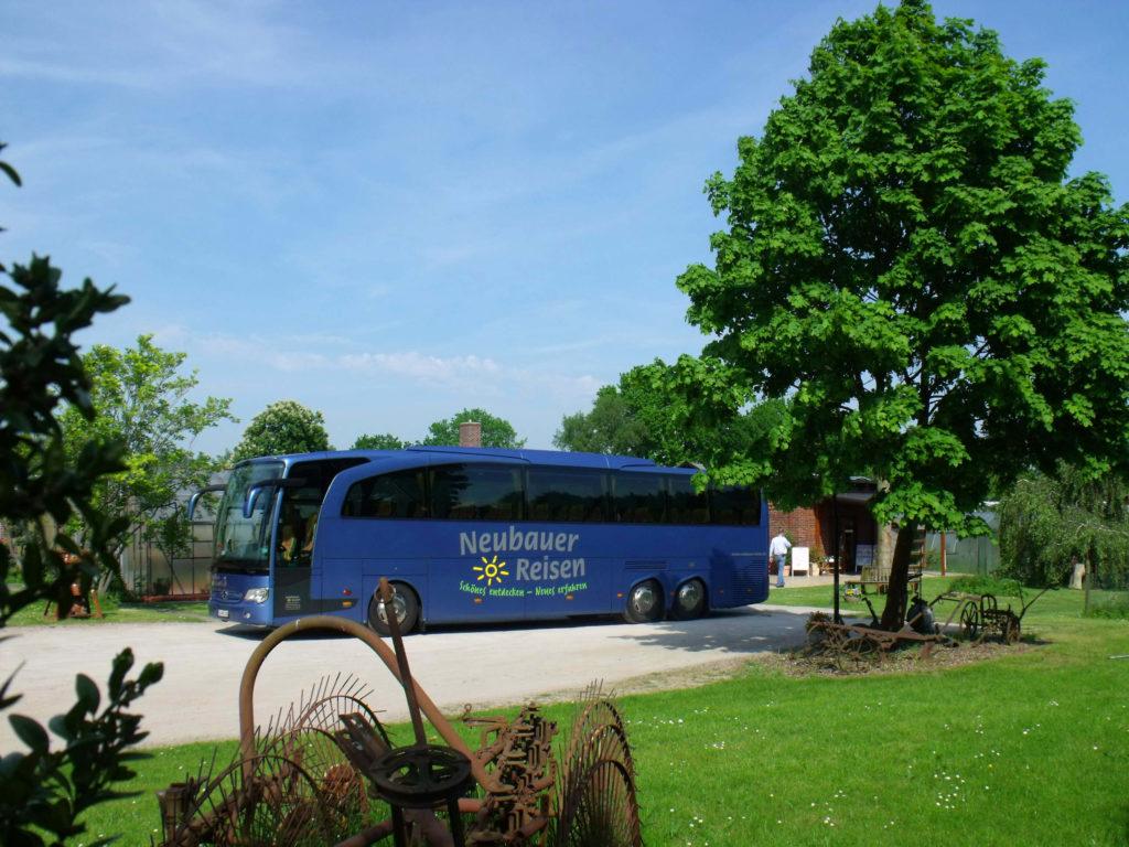 Die modernen Busse bieten dir einen hohen Komfort. Dann fällt es dir leichter mit der rauen Umgebung des Kleverhofes fertig zu werden.