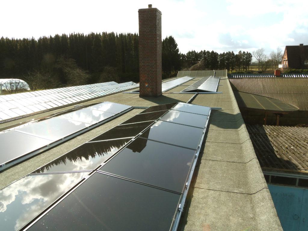 Für Licht und Kühlgeräte im Hofladen stellt unsere grosse Photovoltaik-Anlage die Energie tagsüber zur Verfügung. Nachts mit dem Ökostrom-Anbieter Lichtblick. Auch diese Internetseite wird mit regenerativer Energie versorgt. Wir sind Ökos durch und durch.