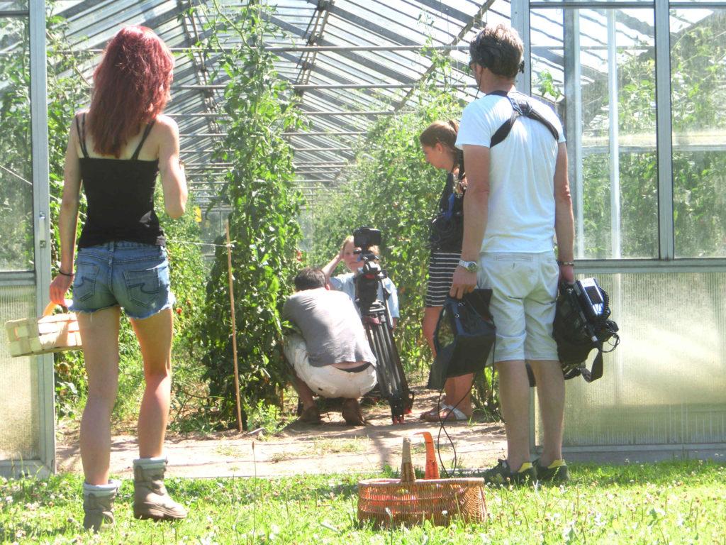 Unsere Girls gehen für die Tomatenernte in Stellung.
