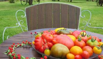 tomatentisch